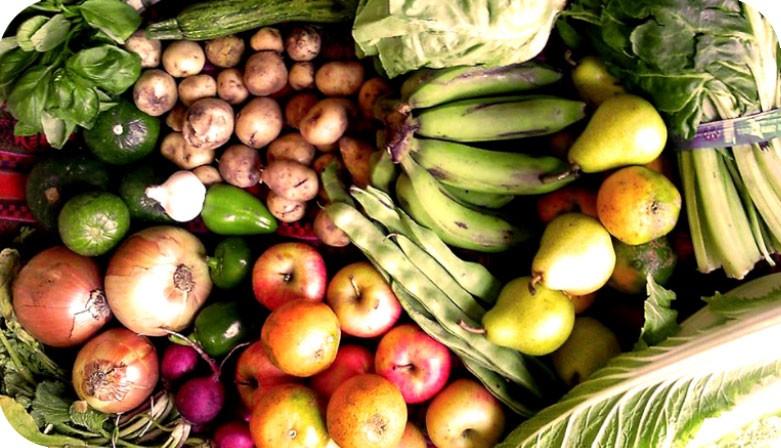 ITAL ORGANICO Cooperativa de Frutas y Verduras